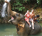 Bathing with the Elephants at Ban Kwan Chang